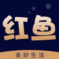 红鱼生活app安卓版1.0.1最新版