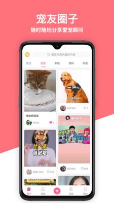 偶小伴app宠物交友平台