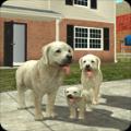 城市狗狗模拟生存游戏攻略版1.0中文版