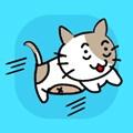 小猫逃走了游戏汉化版1.5最新版