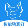 数据猪app专业版1.0.11安卓版